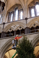 011 8thDec2016_Salisbury Cathedral_Photo by Ash Mills