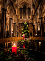 014 8thDec2016_Salisbury Cathedral_Photo by Ash Mills