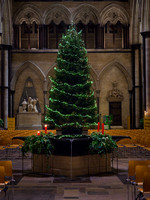015 8thDec2016_Salisbury Cathedral_Photo by Ash Mills